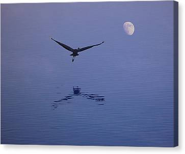 Fly To The Moon Canvas Print by Eric Workman