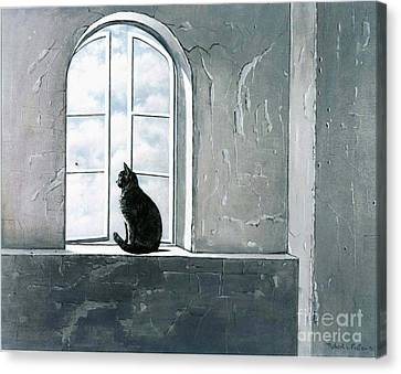 Fly Watching Canvas Print by Robert Foster