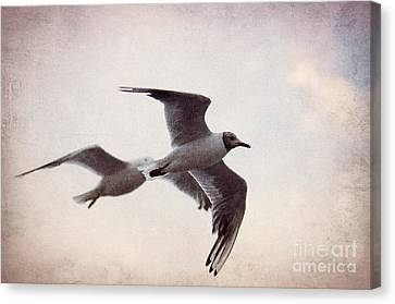 Flying Canvas Print