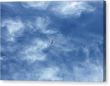Flying Away Canvas Print by Richard Newstead