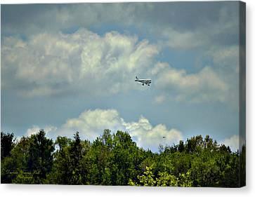 Flying Canvas Print by Darlene Bell