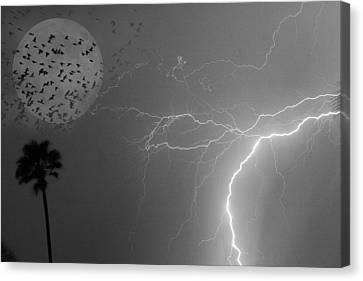 Flying From The Storm Bw Canvas Print by James BO  Insogna