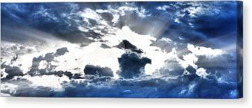 Canvas Print featuring the photograph Flying High by Anthony Rego