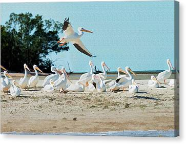 Flying In The Air Over The Flock - Paintography Canvas Print by Dan Friend