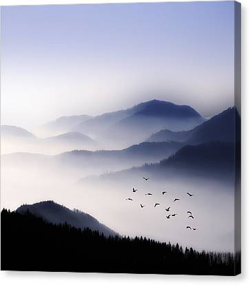 Flying Over The Fog Canvas Print