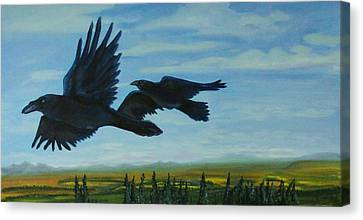 Flying Over The Tanana Flats Canvas Print by Amy Reisland-Speer