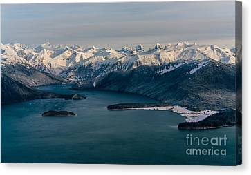 Flying Past Le Conte Glacier Canvas Print by Mike Reid