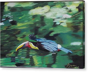 Flying Toucan In Costa Rica Canvas Print