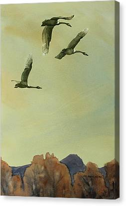 Canvas Print featuring the painting Flyover by Kris Parins