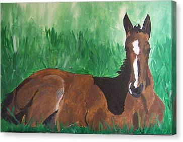 Canvas Print featuring the painting Foal by Krista Ouellette