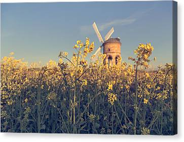 Focus On What Is Right In Front Of You Canvas Print by Chris Fletcher