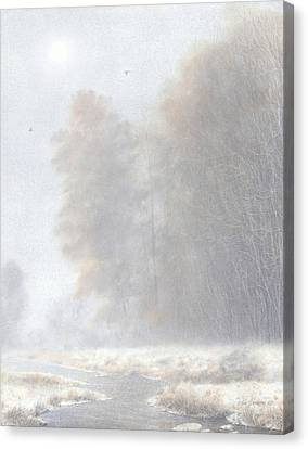 Fog And Frost Canvas Print by Ken Johnston