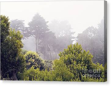 Canvas Print featuring the photograph Fog At Lands End by Cindy Garber Iverson