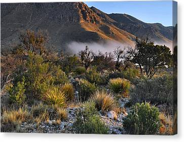 Fog At Sunrise - Guadalupe Mountains Canvas Print by Stephen  Vecchiotti