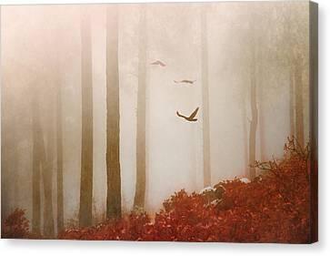 Fog Canvas Print by Elena E Giorgi