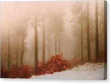 Fog IIi Canvas Print by Elena E Giorgi