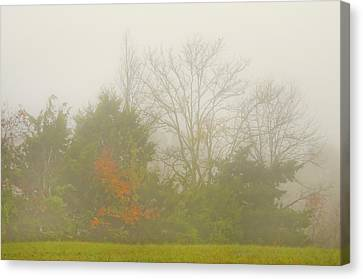 Canvas Print featuring the photograph Fog In Autumn by Wanda Krack