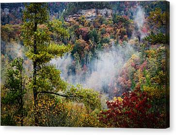 Fog In The Valley Canvas Print by Diana Boyd
