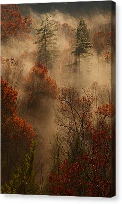 Fog In The Valley Canvas Print by Ulrich Burkhalter