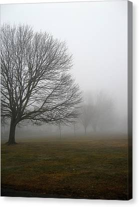 Fog Canvas Print by John Scates