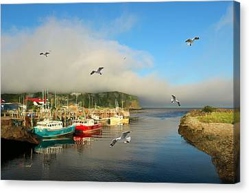 Fog Moves Into The Harbor Canvas Print by Garland Johnson