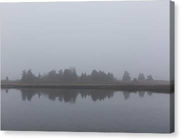 Canvas Print featuring the photograph Fog On The Marsh by Andrew Pacheco