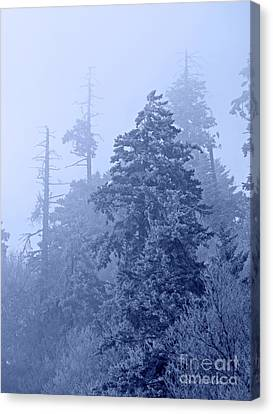 Canvas Print featuring the photograph Fog On The Mountain by John Stephens