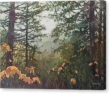 Fog Over Croisan Creek Canvas Print by Jenny Armitage