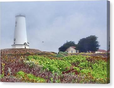 Canvas Print featuring the photograph Fog - Piedras Blancas by Nikolyn McDonald