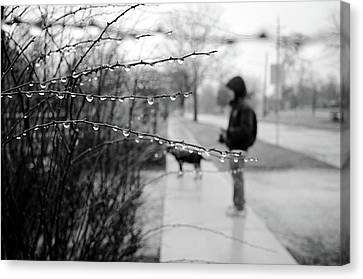 Canvas Print featuring the photograph Fog Rain by Jeanette O'Toole