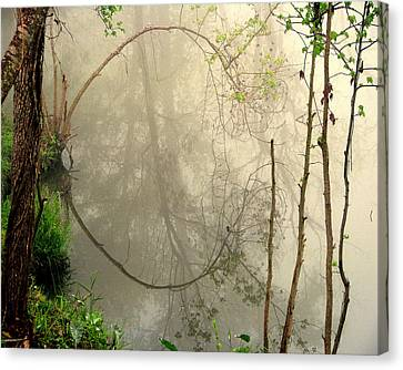 Fog Reflections Canvas Print by Dottie Dees