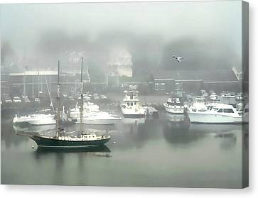Fog Rolls In Canvas Print by Diana Angstadt