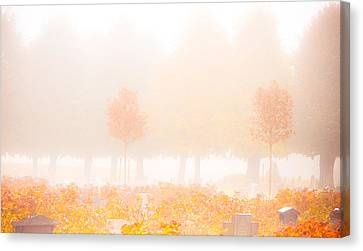 Fog Swept In Canvas Print by Maggie Terlecki