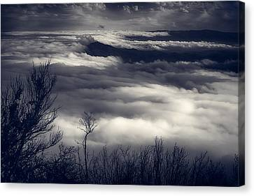 Fog Wave Canvas Print