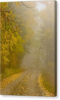 Foggy Autumn Morn Canvas Print by Albert Seger