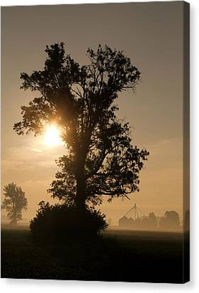 Foggy Country Morning Canvas Print by Dan Sproul