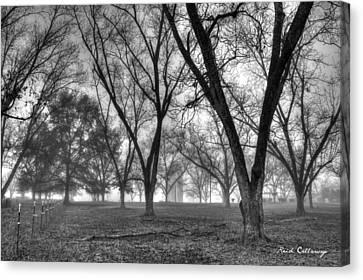 Foggy Day Canvas Print - Foggy Day Pecans Landscape Farm Scene by Reid Callaway