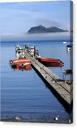 Foggy Dock Canvas Print by Marty Koch