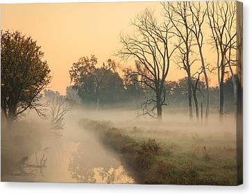 Foggy Fall Morning On Gary Avenue Canvas Print