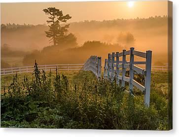 Foggy Fence Canvas Print