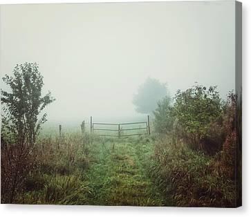 Foggy Field Canvas Print