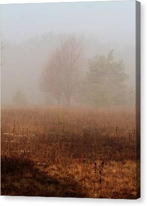 Foggy Field Canvas Print by Scott Hovind