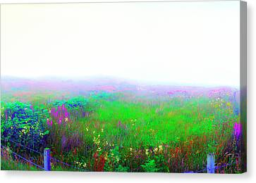 Foggy Flowers Canvas Print by Jan W Faul