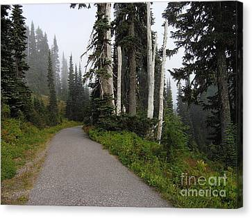 Foggy Forest Canvas Print by Silvie Kendall
