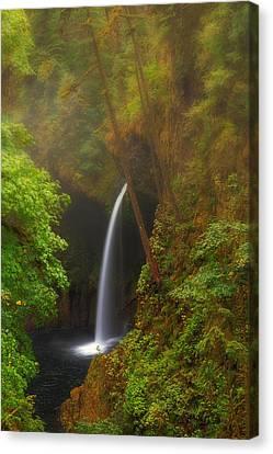 Foggy Metlako Falls Canvas Print by David Gn