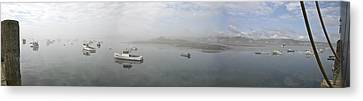 Canvas Print featuring the photograph Foggy Morning At Cape Porpoise by David Bishop