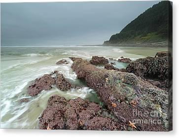 Foggy Morning At Neptune Beach, Oregon Canvas Print