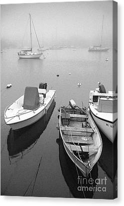 Foggy Morning In Cape Cod Black And White Canvas Print by Matt Suess