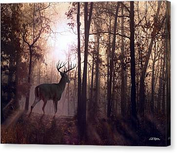 Foggy Morning In Missouri Canvas Print by Bill Stephens