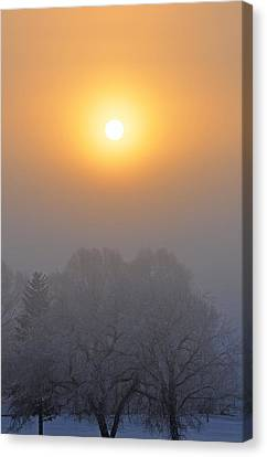 Foggy Morning In Montana's Gallatin Valley Canvas Print by Bruce Gourley